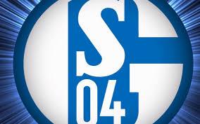 Schießt Geld Tore? Bilanzanalyse Schalke 2017